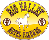 Logo Big Valley Hotel Fazenda